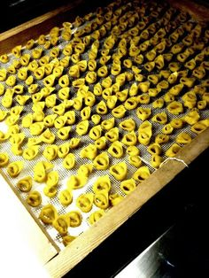 Tortellini in Bologna Bolognese, Tortellini, Butcher Block Cutting Board, Italian Recipes, Italy, Christmas Recipes, Eat, Food, Lasagna