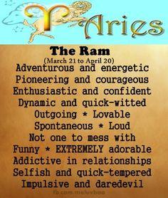 zodiac signs - aries - the ram