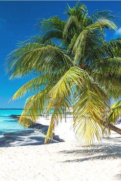 Traumhaftes Mexiko! Alle Tipps Und Infos Für Euren Urlaub Gibt Es Hier Auf  Einen Blick