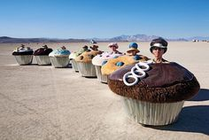 We were almost home when the cupcake gang surrounded us we got