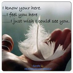 I wish I could see you; I honestly believe you leave me feathers along the way to let me know you're near. That's all I have to hold onto right now.