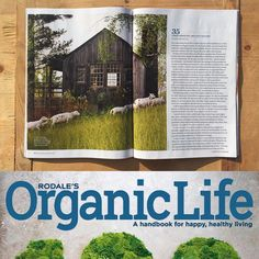 Check out this month's issue of Rodale's Organic Life magazine! We're in it! Jesse's got an article on regenerative farming and how we came to it. (And I snapped the photos.) We are so thankful for the people who have been practicing teaching and advocating for this wholistic approach to agriculture for decades and are delighted to share what we're learning along the way. I'm so proud of my husband/shepherd/MacGyver/closet-web-guru/former-water-slide-attendant whose passion and dogged…