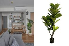 Qanvast's Picks: 6 Affordable Boho Furniture from Shopee | Qanvast Rattan Coffee Table, Beige Sofa, Settee Sofa, Interior Design Living Room, Interior Inspiration, Living Room Furniture, Love Seat, Minimalist, Boho