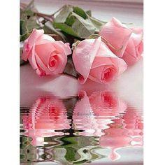 3.86AUD - Diy 5D Diamond Embroidery Painting Cross Stitch Craft Kit Home Decor Flower Rose #ebay #Home & Garden