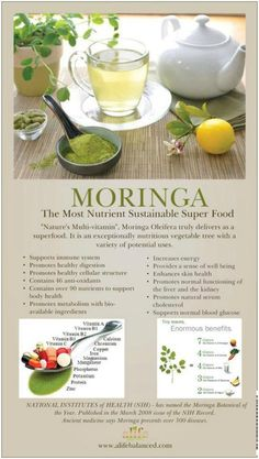 ORIG PIN: Moringa Oleifera is a super food. Heard abt it on morning shows, beauty magazine articles, Dr. & theres actually tons of info (why? - maybe bc u can never be too prepared for the zombie apocalypse? Moringa Leaves, Health And Nutrition, Health And Wellness, Health Tips, Health Benefits, Zeal Wellness, Tea Benefits, Food Facts, Moringa Oleifera