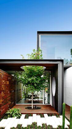 Como detalle sustentable, se preservó un árbol que atraviesa el techo. | Galería de fotos 2 de 21 | AD MX