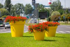 Flower Pots from various materials