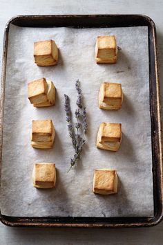 Honey Lavender Biscuits Imagine waking up to the heavenly aroma of honey, lavender, and buttery biscuits. A Food, Food And Drink, Veggie Food, Biscuit Recipe, Biscuit Bread, Tapas, The Best, Sweet Tooth, Dessert Recipes