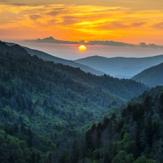 Visit LeConte Lodge in the Great Smokey Mountains National Park around the time (late May/early June) that fireflies come out to mate. Also, you have to hike 5.5 miles to the rustic lodge