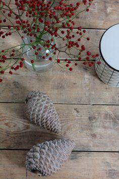 Ein Blog mit Lifestyle- und Einrichtungstipps. Ein Blog mit Thema Dekoration, Backen, Kochen, DIY-Anleitungen, Rezepten und Ideen.