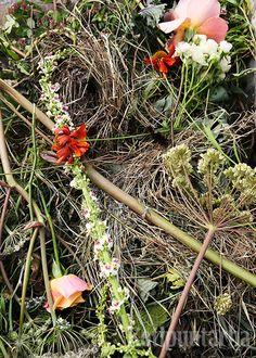 Kun kesä on hiipunut ja kasvit kuihtuvat, on komposti kauneimmillaan! Kuva: Hanna Marttinen Plants, Plant, Planets