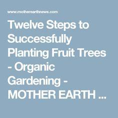 Twelve Steps to Successfully Planting Fruit Trees - Organic Gardening - MOTHER… Planting Fruit Trees, Planting Vegetables, Growing Vegetables, Vegetable Gardening, Cranberry Juice Detox, Squash Bugs, Natural Pesticides, Pest Control, Bug Control
