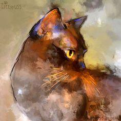 Feline Art by Denise Laurent   Elli - Brown Burmese Cat