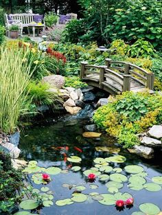 Amazing Garden Ponds A well done garden pond can add a lot to your landscape plan. There are endless possibilities. If you have some terrain in your yard you could even have a stream and or a water…
