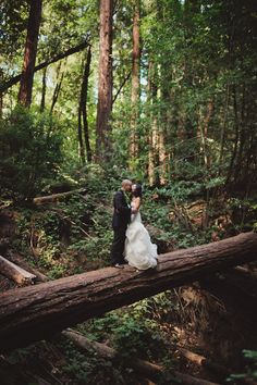 woods are cool. 50-The-Tavern-at-Lark-Creek-wedding-Andria-Lo