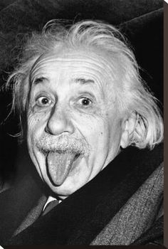 Stretched Canvas Print: Einstein, Tongue : 29x20in