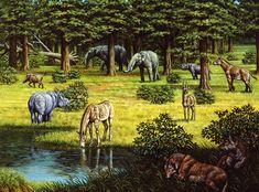 Prehistoric Wildlife Of The Miocene Era Photograph by Mauricio Anton