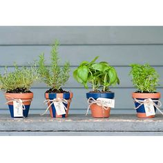 These fragrant potted herb party favors are inexpensive and incredibly easy to create. Gift these to new homeowners at a housewarming party, or at a mid-summer dinner party. via The Sweetest Occasion/