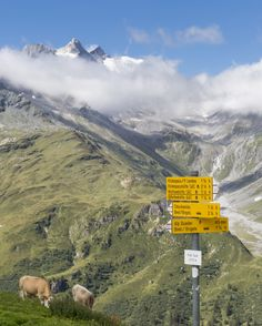 Val Frisal in Brigels. Foto: nordlichtphoto.com Mount Everest, Mountains, Nature, Travel, Naturaleza, Viajes, Trips, Nature Illustration, Outdoors