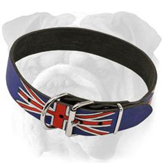 Handpainted Union Jack #Collar for #English #Bulldog $49.90