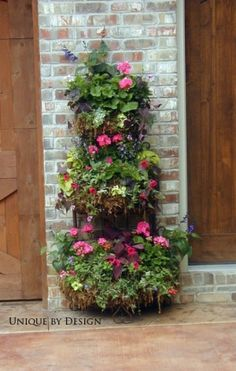 Container garden with very vertical shaping!!! Bebe'!!! Love this...lots of plants in a small space!!!