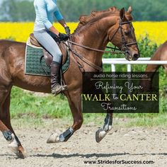 Having trouble with your canter transition? I suggest refining your walk to canter transition to improve your trot to canter transitions. Horse Riding Tips, My Horse, Horse Love, Horse Tips, Crazy Horse, Dressage, Horse Exercises, Riding Lessons, English Riding