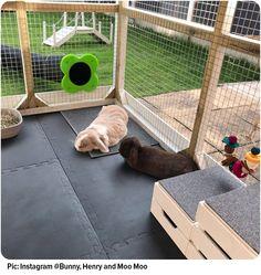 Rabbit Cages Outdoor, Indoor Rabbit House, Rabbit Hutch Indoor, Indoor Rabbit Cage, House Rabbit, Rabbit Hutch And Run, Rabbit Hutch Plans, Bunny Sheds, Rabbit Shed
