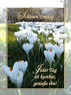 Smiley, Collage, Friday, Painting, Advent, German, Facebook, Good Morning Happy Friday, Good Night