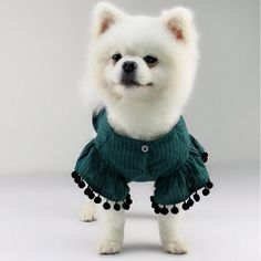 Niho Boni Pet Shirt - XS / Dijon