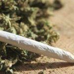 Adolescent marijuana use increases risk of subclinical psychotic symptoms - May 9, 2016