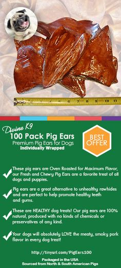 Healthy Pig Ear Chews for Dogs No Preservatives No Additives Thick Cut No Hormones Oven Baked /& Slow Cooked Delicious Dog Chew Snacks 10 Ears USA Made High Protein Pig/'s Ears Pet Treats