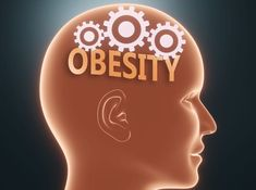 [WEB SITE] Study Links Obesity to Brain Plasticity and Stroke, TBI Recovery Recovering From A Stroke, Transcranial Magnetic Stimulation, University Of South Australia, Metabolic Disorders, Brain Science, Neuroplasticity, Healthy Brain, Brain Injury, Weight Control