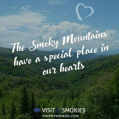Smoky Mountain Vacation Planning for Gatlinburg, Pigeon Forge, and Sevierville TN Gatlinburg Vacation, Gatlinburg Tennessee, Tennessee Vacation, Gatlinburg Fire, Smoky Mountains Tennessee, East Tennessee, Great Smoky Mountains, Smokey Mountain, Travel Humor