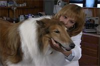 Extend Your Pet's Life Naturally by Carol Osborne. Antioxidants are widely recognized as one of the most important weapons in our battle against pet aging and disease. All the physiological processes in pets and people require oxygen, which provides us with energy. Bi-products of burning oxygen, similar to the sparks given off by a fire, are also produced in your pet's body. These little sparks are commonly known as free radicals, and are the major...