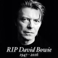 Bowie was like no other human. Such a brilliant artist. RIP. And thank you.