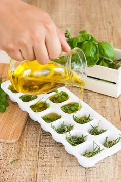 Freezing Herbs with Olive Oil for Long Lasting Flavor | Freezing Basil