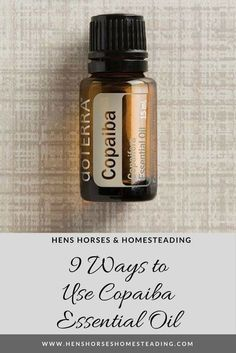 9 Ways to Use Copaiba Essential Oil! Hens Horses & Homesteading #henshorseshomesteading #copaiba #doterra #essentialoil
