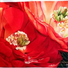 Linda, red cactus, 48x 35, by Karen Sistek at Courtyard Gallery, La Conner, WA