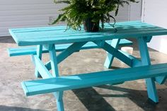 turquoise colored furniture - Google Search