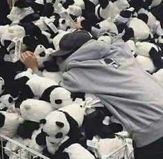 {closed: jb} Well, he was just planning on buying her a small present.. nothing big, just a little plushie to keep her company. But.,he found a...mountain of smol pandas, and he did what was logically possible, claim all of them as his. He smiled softly and settled on picking two. One for Cora and one for himself. He finally said goodbye to the stuffed bears and made his way to the check out when he ran into her. OF course, he recognized her immediately, and pulled her close to himself…