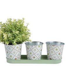 Another great find on #zulily! Botanicae Flower Pot & Tray Set #zulilyfinds