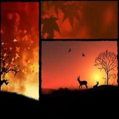 collage fall by AT