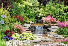 Un ruisseau entouré d'arbustes et de fleurs (Scènes de jardins)