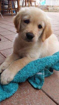 such a cutie                                                                                                                                                                                 Mais