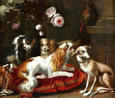 Unknown (French) Parrot Watching Greyhounds and King Charles Spaniels 1720 Cavalier King Spaniel, King Charles Spaniel, Cavalier King Charles, Dog Blanket, Antique Paint, Old Paintings, Vintage Dog, Dog Portraits, Dog Art
