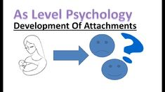 How do attachments develop? In this lesson we will look at the factors that can influence the development of attachments. A Level Revision, Psychology A Level