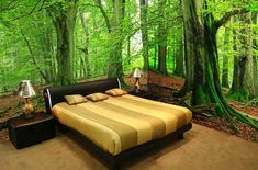 3d Wallpaper For Bedroom, Wall Murals Bedroom, 3d Wallpaper Mural, Forest Wallpaper, Mural Wall, Photo Wallpaper, Wallpaper Designs, Wall Art, Whimsical Bedroom