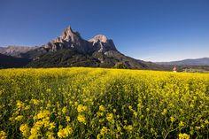 Alpe de Siusi by Cesare Simioni on 500px