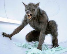 Werewolf - [Being Human]