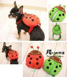 Pet Supplies Pet Clothes Dog Collar Harness With Lead Backpack With Lead Cute Dog Backpack, Dog Bag, Puppy Collars, Puppy Clothes, Dog Carrier, Diy Stuffed Animals, Dog Harness, Lady Bug, Pet Shop